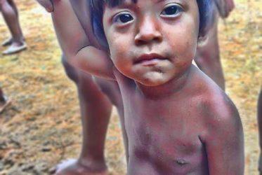 Proyectos Niños de la Selva